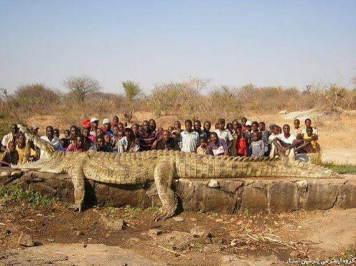 e6b15-africa