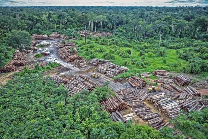 Illegally logging camp on Pirititi indigenous amazon lands on Ma